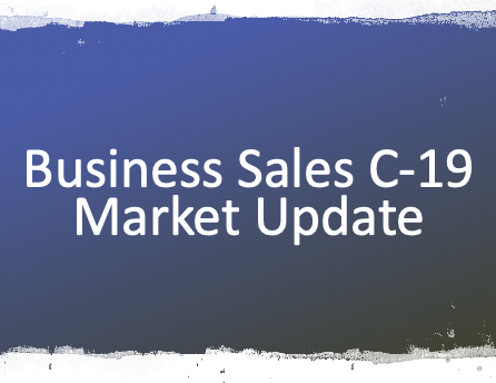 2020 AUG WEBINAR – BUSINESS SALES MARKET UPDATE